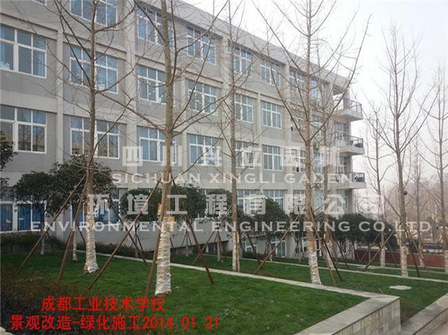 成都市工业职业技术学校天府校区绿化工程施工现场