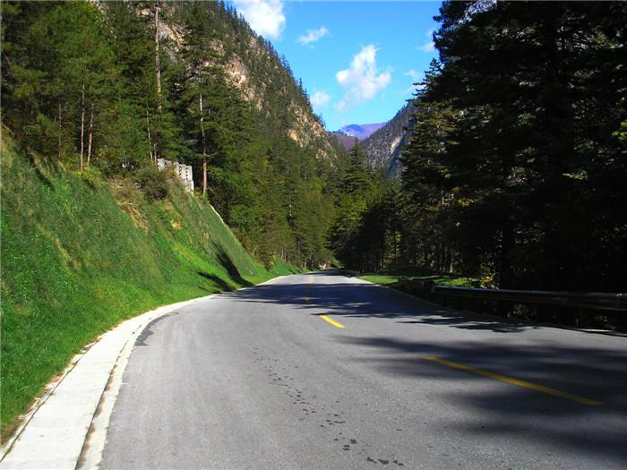 九寨沟道路边坡绿化
